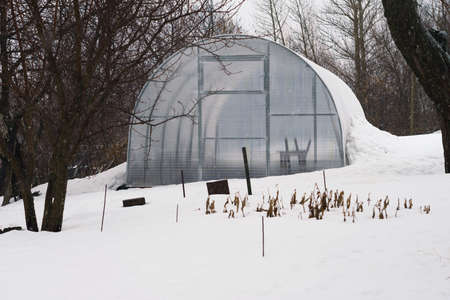 polycarbonate: hothouse of polycarbonate in winter