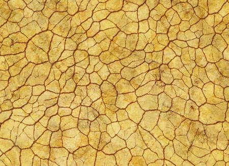 cracked dry desert ground background