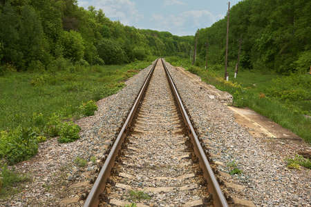 railroad going into the distance through wild forest. focus on a center foreground railing