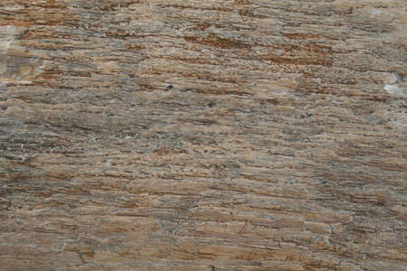 Woodgrain  Imagens