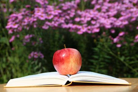 An apple in the garden is on a book. Stok Fotoğraf