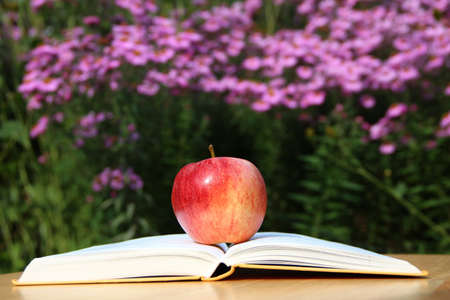 An apple in the garden is on a book. Stock Photo