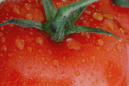 Tomato with stem and dops