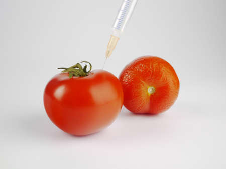 a fresh tomato with a syringe beneath a wrinkled tomato
