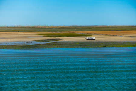Ria Formosa, Portugal - Mussel banks near Faro, formed over 200 years in the former earthquake area at the Atlantic Ocean