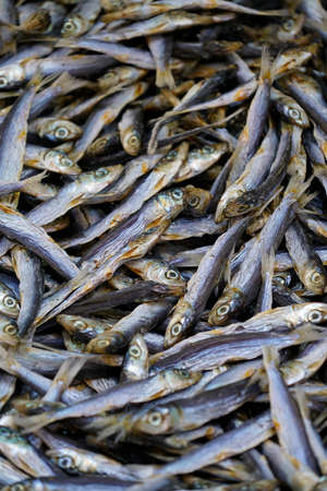 anchovies - lot of dried small fish