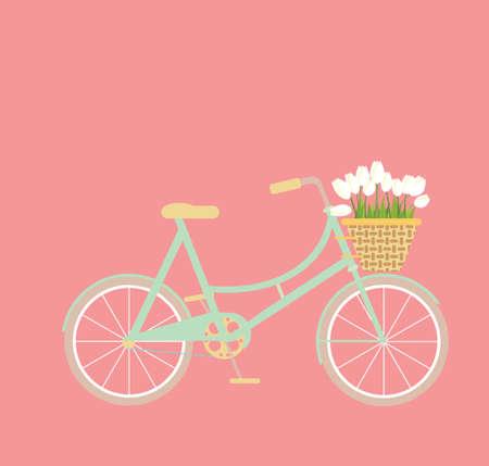 wicker basket: Mint bycicle with wicker basket of tulip flowers