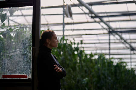 Business in modern greenhouses all year round. Side view of the young female entrepreneur standing at the entrance to the hangar with green plants visible inside the greenhouse. 版權商用圖片