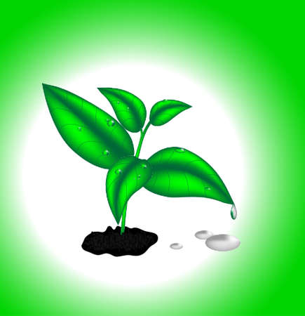 An image of a green nature concept Vector