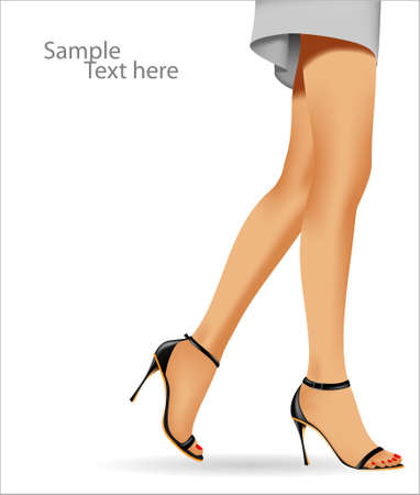 Beautiful female feet on a white background. The vector illustration.