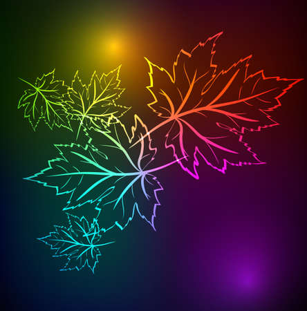 Autumn leaves of a maple. A neon background Vector