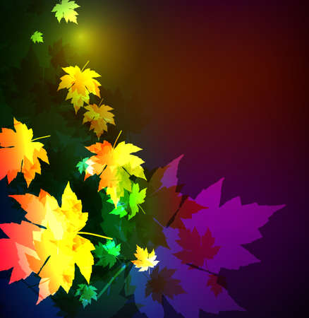 neon plant: Autumn leaves of a maple. A neon background