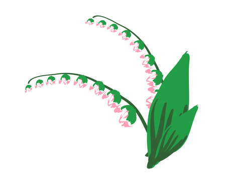 lily of the valley: sketch of a flower lily of the valley. vector illustration
