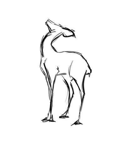 Doe standing. Sketch Vector illustration.