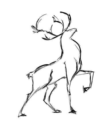 black tail deer: Deer standing. Sketch Vector illustration.