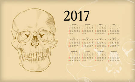substructure: Calendar 2017. The human skull.