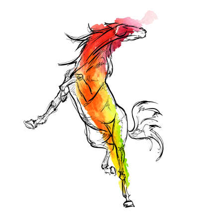 Galloping horses. Hand-drawn vector illustration  in watercolor drawing style