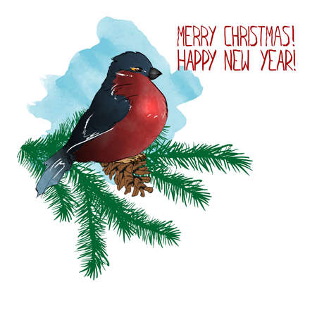 illustration in watercolor style. Bullfinch on a spruce branch with a cone. Merry Christmas and happy new year. Greeting card.