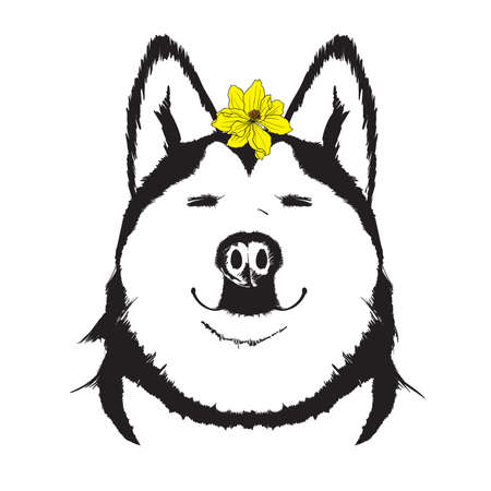 Face of a happy smiling happy dog with a yellow flower on his head. Spring dog.