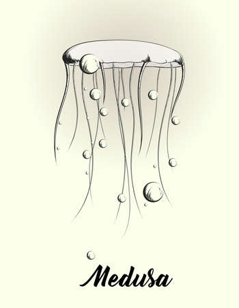 Jellyfish vector sketch drawn on a brown background for modern card design. Monochrome hand drawn sketch illustration of swimming medusa. Vector image. 向量圖像