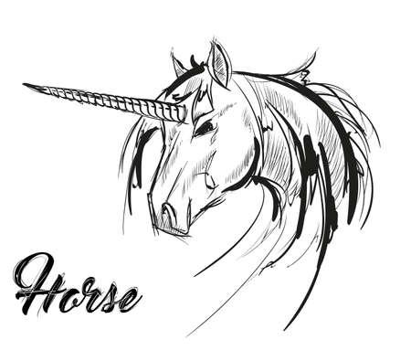 Unicorn sketch icon. Vector magic or mystic fairy horse horn and waving mane. Wild fantastic unicorn stallion symbol for equine sport or equestrian races contest exhibition Ilustração