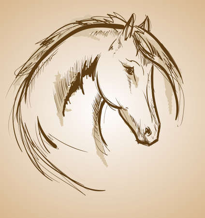 Horse sketch icon. Vector horse waving mane. Wild horse stallion symbol for equine sport or equestrian races contest exhibition  イラスト・ベクター素材