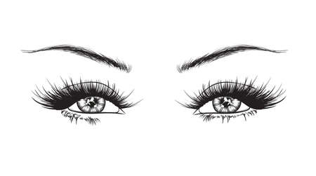 Hand-drawn womans luxurious eye with perfectly shaped eyebrows and full lashes. Idea for business visit card, typography vector. Perfect salon look.
