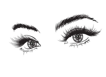 Hand-drawn woman's luxurious eye with perfectly shaped eyebrows and full lashes. Idea for business visit card, typography vector. Perfect salon look.