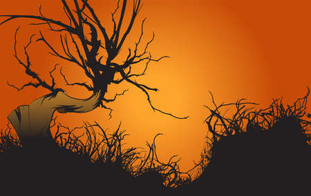 Autumn sunset. Banner with a landscape of a dried tree.