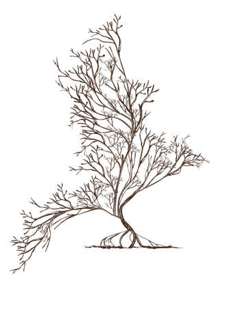 Trees intertwined in bird shape with, hand-drawn illustration in vintage style. Vettoriali