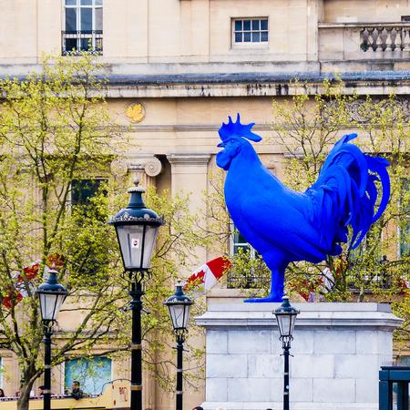 Poulet français en Angleterre Banque d'images - 54861149