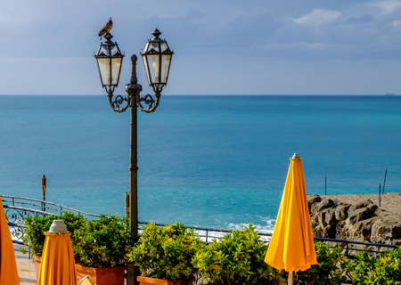 A pigeon on a lamppost. On the horizon the Mediterranean Sea. Sicily, Italy
