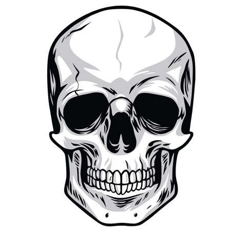 Skull Vector Art Illustrations Vector Illustration
