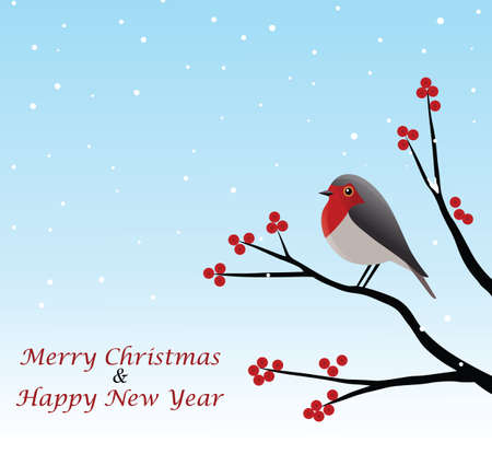 Christmas Greeting With Red Robin Sitting On Branch