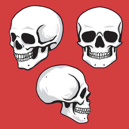 Set of Skull Hand Drawing Vector Illustration 矢量图像