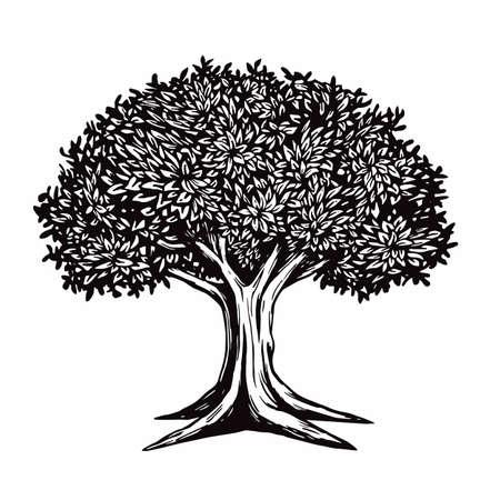 Rbol Vector Illustration Dibujo Logo Template Foto de archivo - 87603578