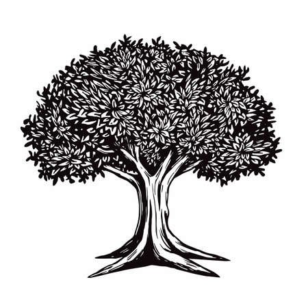 Tree Vector Illustration Drawing Logo Template