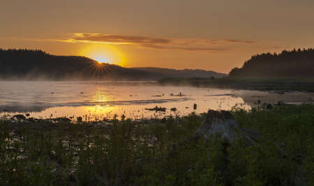 lipno: Wetland and heath with roots in Lipno, morning landscape with a lake. Stock Photo