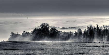 inversion: Mist dreamy landscape. Inversion in the Moravian Gate.Black and white picture. Stock Photo