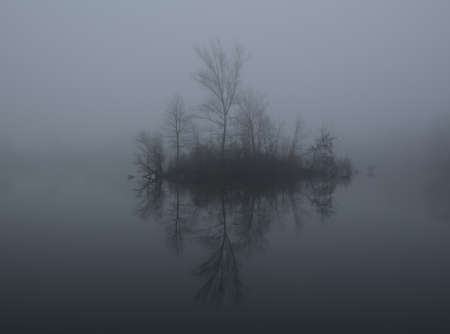 Mist on a lake at dawn, trees reflected in a lake in a cold misty day.