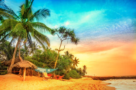 Tropical beach with palms.Beach and tropical sea.Sunset over the coconut palms. Paradise idyllic beach Sri Lanka. Beautiful Sri Lanka landscape. Exotic water landscape with clouds on horizon. Summer holidays. Ocean shore in the evening as nature travel ba Banco de Imagens