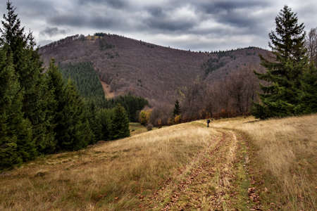 Man travels with a backpack in the landscape.Testing lifestyle.Mountain forest landscape under evening sky with clouds in sunlight.Natural outdoor travel background. Reklamní fotografie