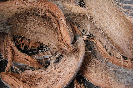 photo of coconut fibers produced by stripping coconuts
