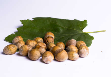 hazel nuts with leaves on the white background