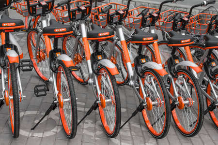 shared: Neat shared bicycle