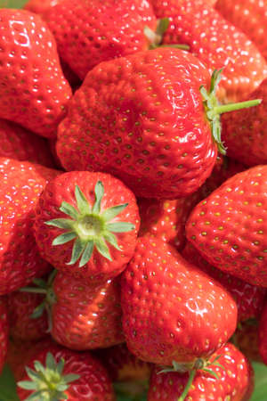strawberries close up view 版權商用圖片
