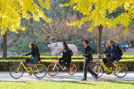 Riding share bike in the campus 新聞圖片