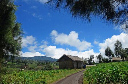 At the foot of the mountain village Ranupane semeru, East Java, Indonesia photo
