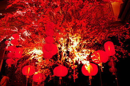 Lantern in the Empire Palace in Chinese New Year celebrations in Surabaya, East Java, Indonesia