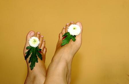 foots: Beautiful flowers and famele foots indoors. Stock Photo